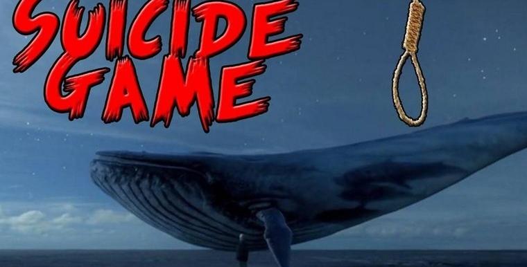 蓝鲸50条规则 蓝鲸游戏全部规则都致命(图片)