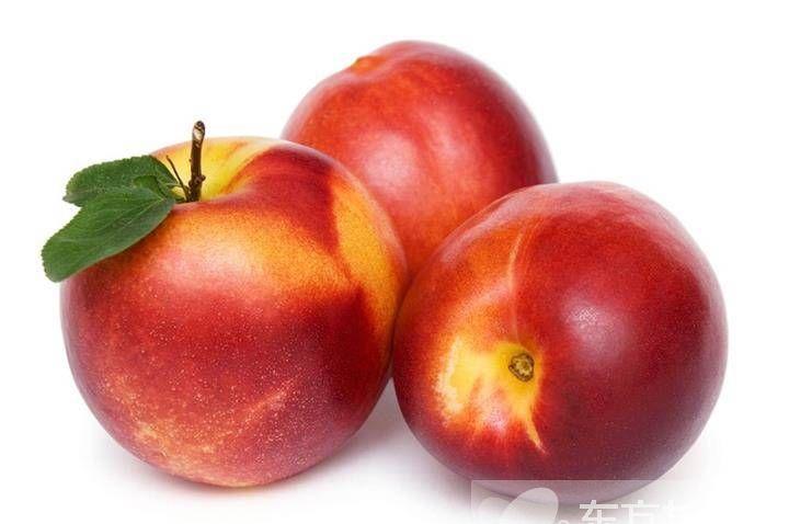 油桃的功效与作用 油桃的食用禁忌须知