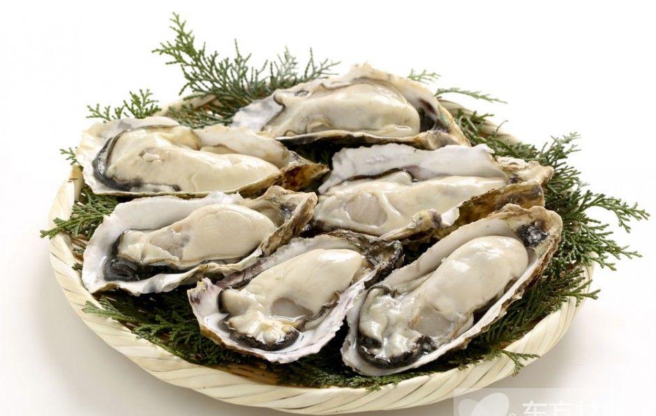 海蛎子的营养价值 女人吃了据说可以变美哦
