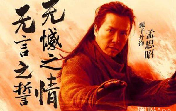 杨紫琼甄子丹合作电影有哪些介绍 真功夫一看便知