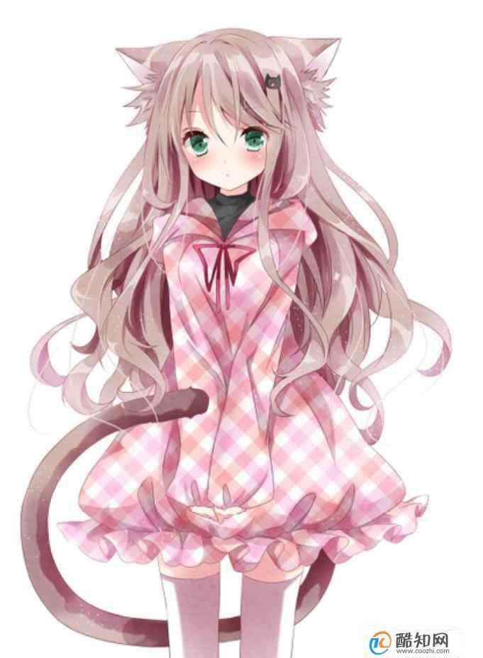 猫系 猫系女孩有什么特点