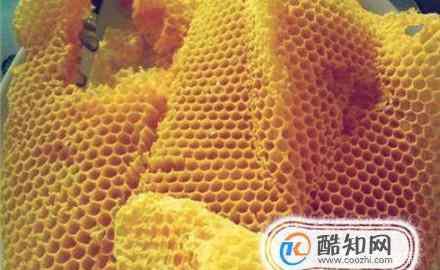 蜂蜡的作用与功效 蜂蜡的功效与作用及食用方法