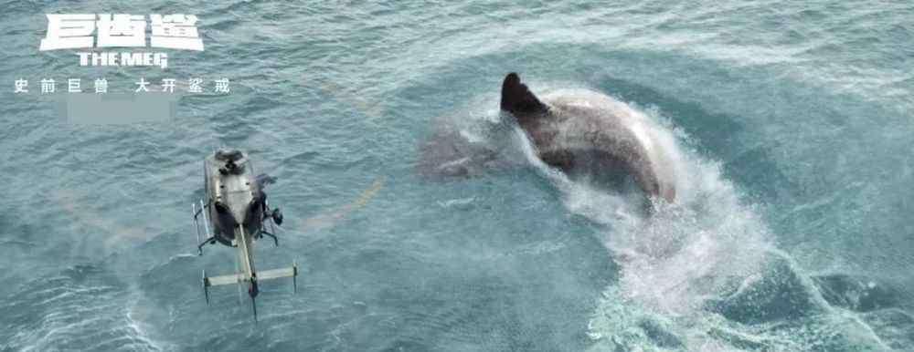 巨齿鲨动物 电影里令人胆寒的巨齿鲨,真是水里最凶猛的动物吗?
