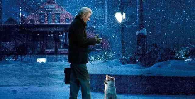 人狗殊途是什么意思 一条狗终其一生,只为了等待他的主人,可惜人狗殊途。催泪推荐!