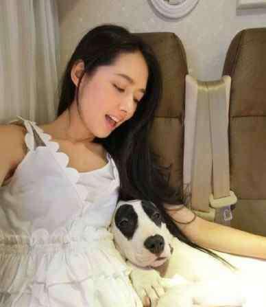 蔡依林的狗 娱乐圈爱狗如命的明星,这只狗上辈子可能拯救了银河系