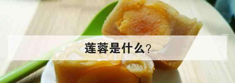 莲蓉是什么 莲蓉是什么