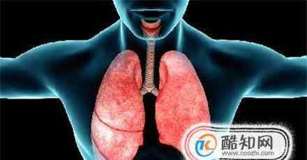 呼吸系统疾病 呼吸系统疾病的常见症状