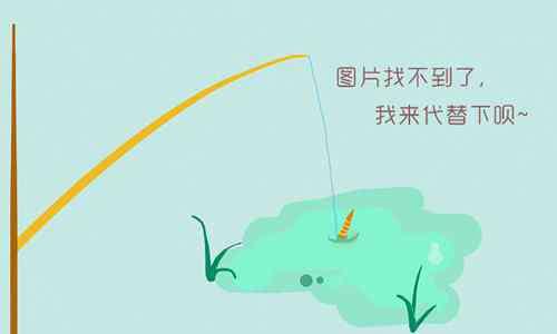 贵州卫视非常完美插曲 贵州卫视非常完美插曲所有的歌曲都有哪些