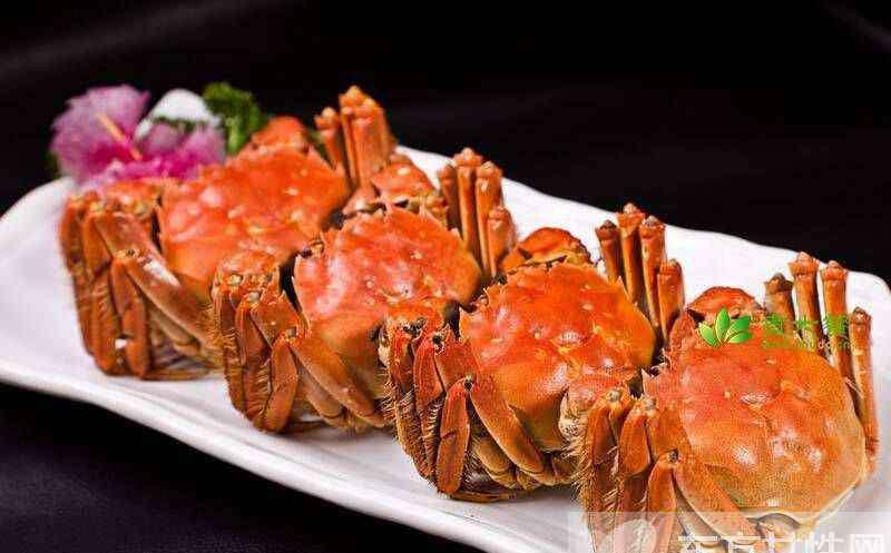 螃蟹不能和什么同吃 三大食物忌同食