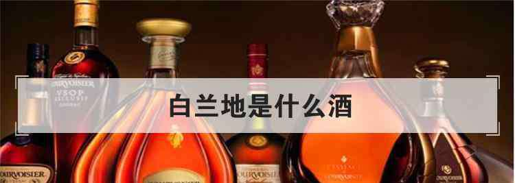 xo是什么酒 白兰地是什么酒