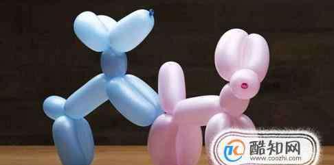 用气球做小动物教程 动物气球制作方法