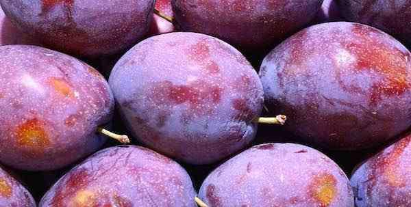 肾阴虚吃什么食物 肾阴虚吃什么水果能补 重振男人雄风的时候到了