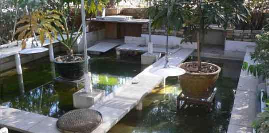 龟缸造景 裸缸养龟好还是铺底沙养龟好 水陆缸造景教程