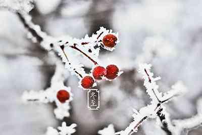 """冬至养生 真正的""""数九寒天""""来啦!冬至养生从搓手泡脚开始"""