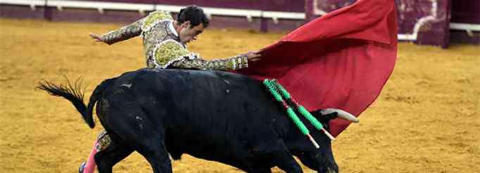 牛为什么看见红色就追 牛为什么看见红色就追?