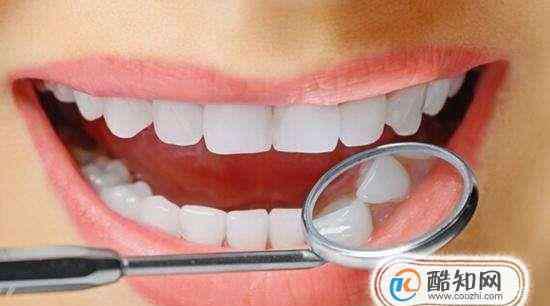 牙齿结构 牙齿的结构(图解)