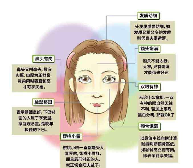 郭晶晶面相分析 最旺夫的脸型图片详解 郭晶晶第一 看看你属于哪一种?
