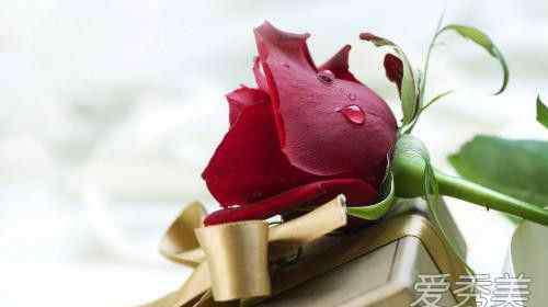 情人节什么时候 情人节怎么送花 最佳的送花时间看过来