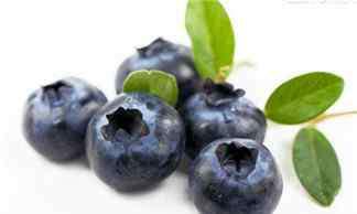 孕妇一天吃多少颗蓝莓 孕妇蓝莓一次吃很多会怎样 蓝莓一天吃多少为宜
