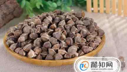 辣木籽的功效 辣木籽的功效和作用及食用方法