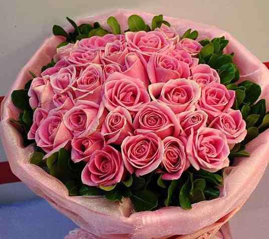 粉玫瑰 粉玫瑰代表什么