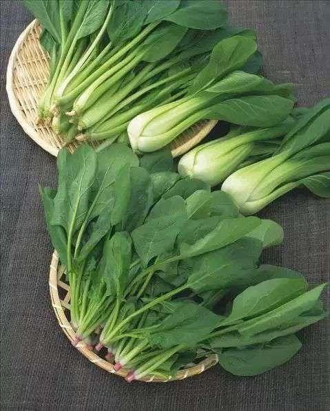 韭菜怎么保存 蔬菜不放冰箱怎么保存时间长