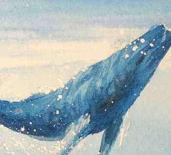 鲸鱼是哺乳动物吗 鲸鱼是鱼吗?