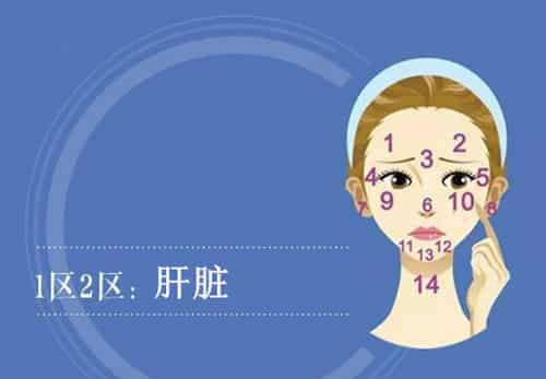 脸部长痘痘的原因 脸上各部位长痘痘图解 找到根源才能解决问题