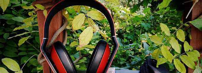 听音乐的好处 为什么给植物听音乐会长的更好?