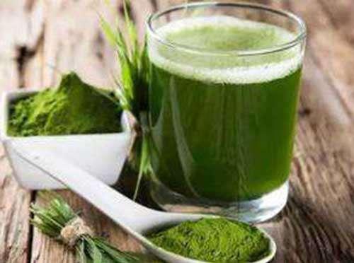 青汁的功效和服用方法 青汁的功效和副作用