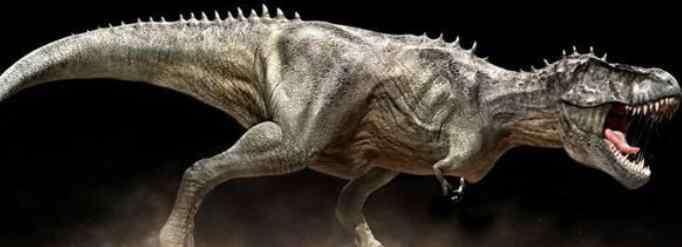 前肢 霸王龙的细小前肢有什么用?