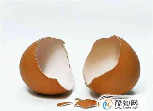 鸡蛋壳 怎么利用鸡蛋壳去除热水壶的水垢?