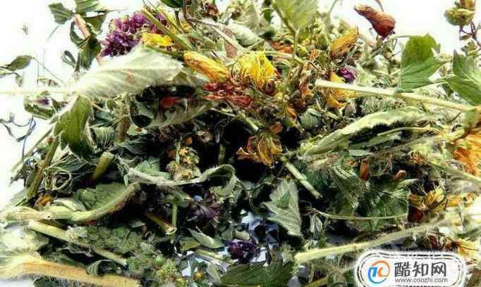 中药的作用 生活中常见中草药及其作用