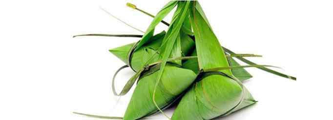 粽子叶是什么植物的叶子 粽子叶是什么植物的叶子?