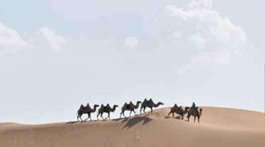 鄂尔多斯旅游景点大全 内蒙古鄂尔多斯十大旅游景点排行榜 鄂尔多斯有什么好玩的地方