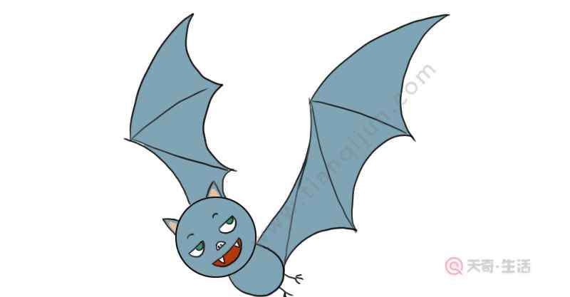 蝙蝠的简笔画 蝙蝠的简笔画 蝙蝠的简笔画画法