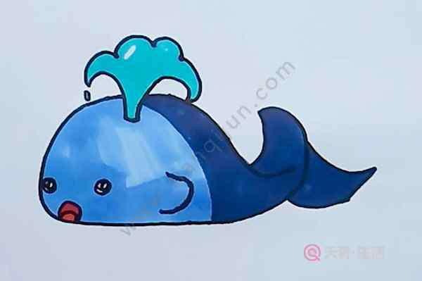 鲸鱼简笔画 鲸鱼简笔画