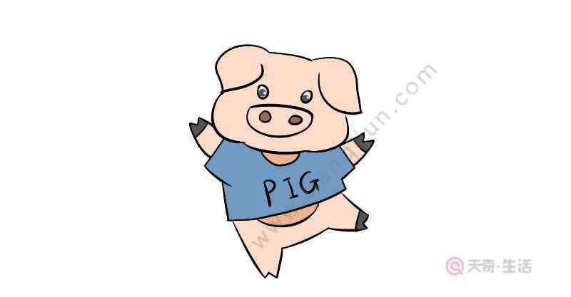 简笔画猪的画法 卡通猪简笔画画法  卡通猪简笔画步骤
