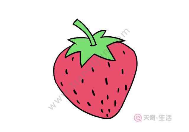 草莓的简笔画 草莓简笔画