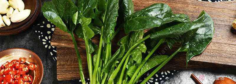 菠菜和什么不能一起吃 菠菜不能和什么一起吃 菠菜和黄瓜一起吃会怎么样