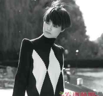 李宇春的发型 剪李宇春那样的发型 李宇春发型设计图片