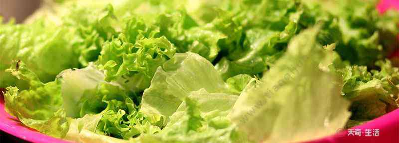 生菜热量 生菜热量 生菜有助于减肥吗