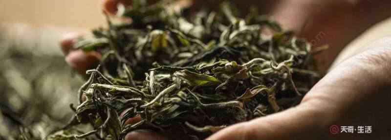 茶叶过了保质期还能喝吗 茶叶保质期过了能喝吗 超过保质期的茶能喝吗