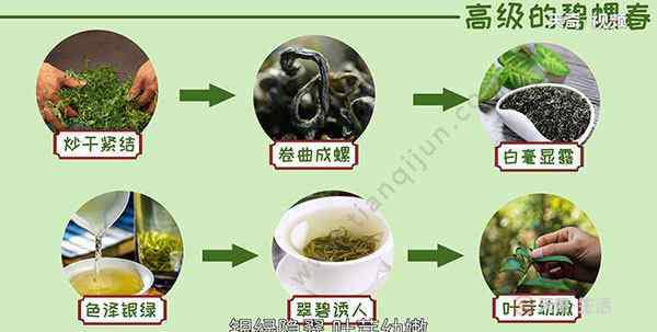 碧螺春产于哪里 碧螺春产地在哪个省份 碧螺春产于我国哪个省