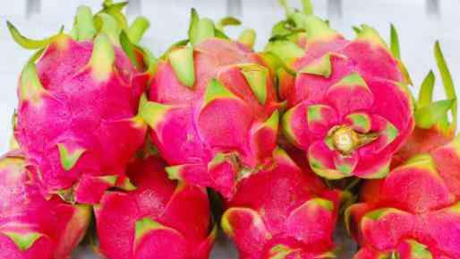 火龙果有什么营养 火龙果有哪些营养价值 火龙果的神奇功效