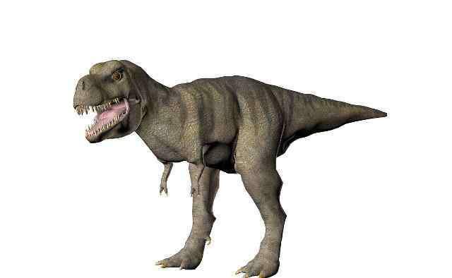 最大的恐龙是什么恐龙 什么恐龙能打败霸王龙