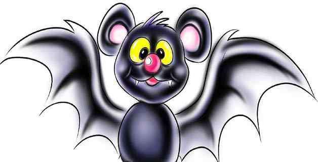 什么的蝙蝠 蝙蝠的特点是什么