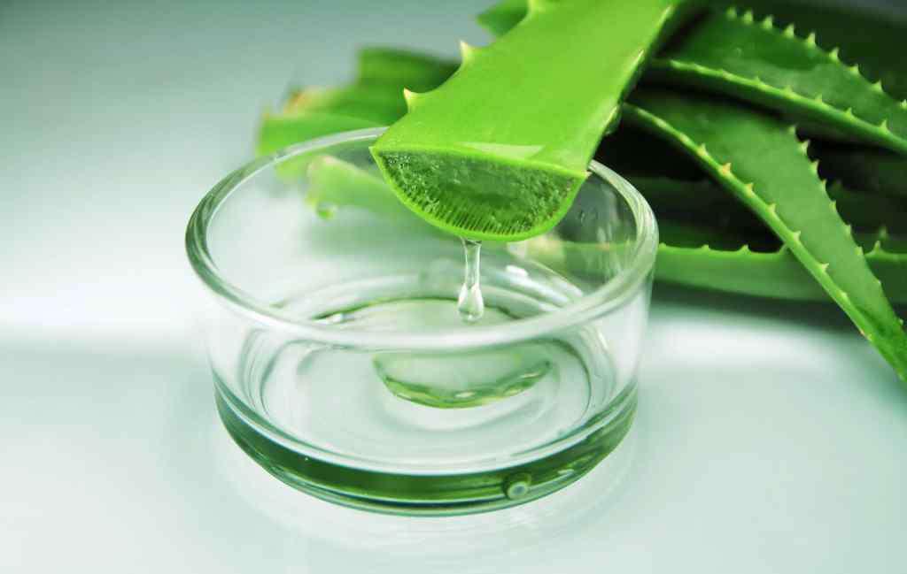 芦荟胶的功效与用法 芦荟凝胶的正确用法和功效
