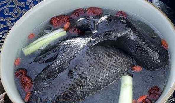 红烧乌鸡的做法 乌鸡汤怎么做好喝 乌鸡汤的做法技巧