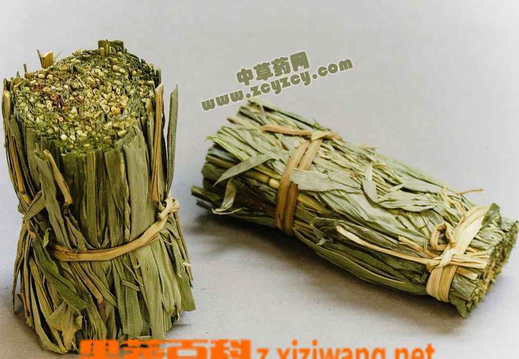 淡竹叶是什么 淡竹叶是什么 淡竹叶的功效与作用